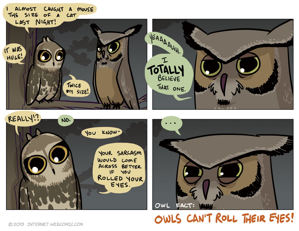 I Don't Give A Hoot